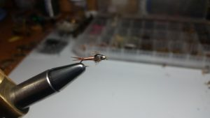 Bead head Copper John nymph trout fly
