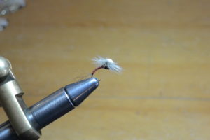 A Brook's Sprout Emerger dry fly