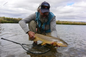 A large Montana brown trout from our private stillwater.